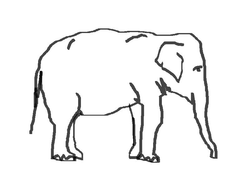 Fileelefant Strichzeichnungpng Wikimedia Commons