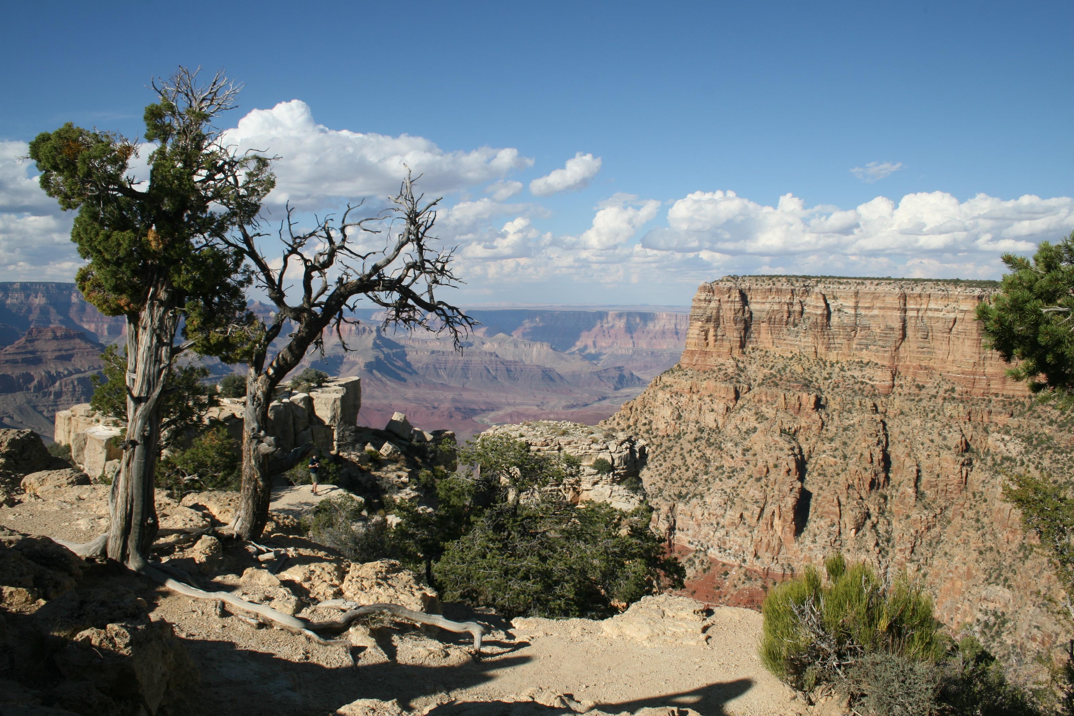 Moran Point South Rim Grand Canyon National Park Arizona Stock ...