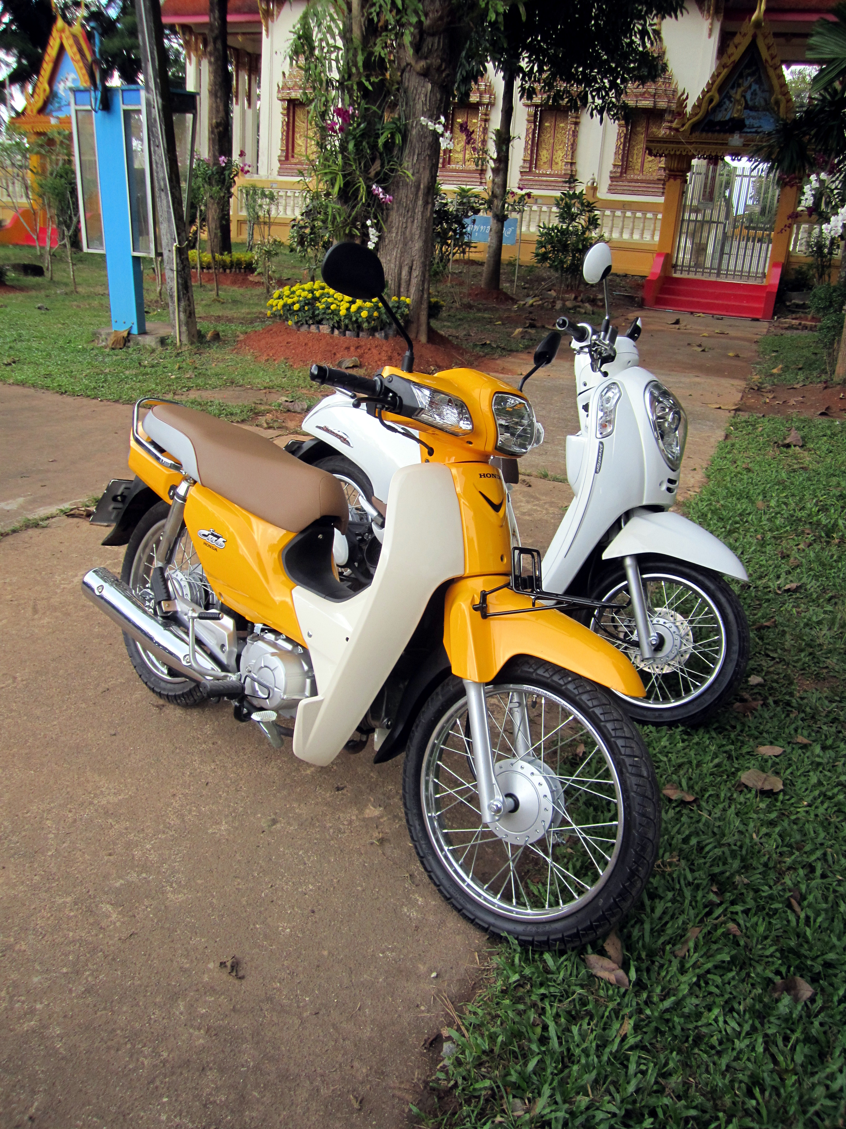 File Honda Dream 110i Super Cub Nd110m 2014 With A Honda Scoopy Jpg Wikimedia Commons