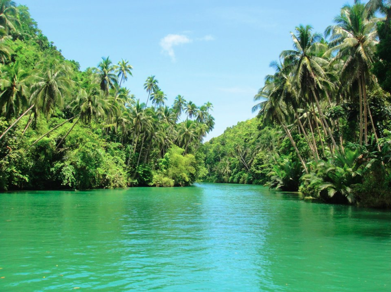 https://upload.wikimedia.org/wikipedia/commons/5/5c/Loboc_river.png