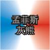 MEM Logo ZhWN.png