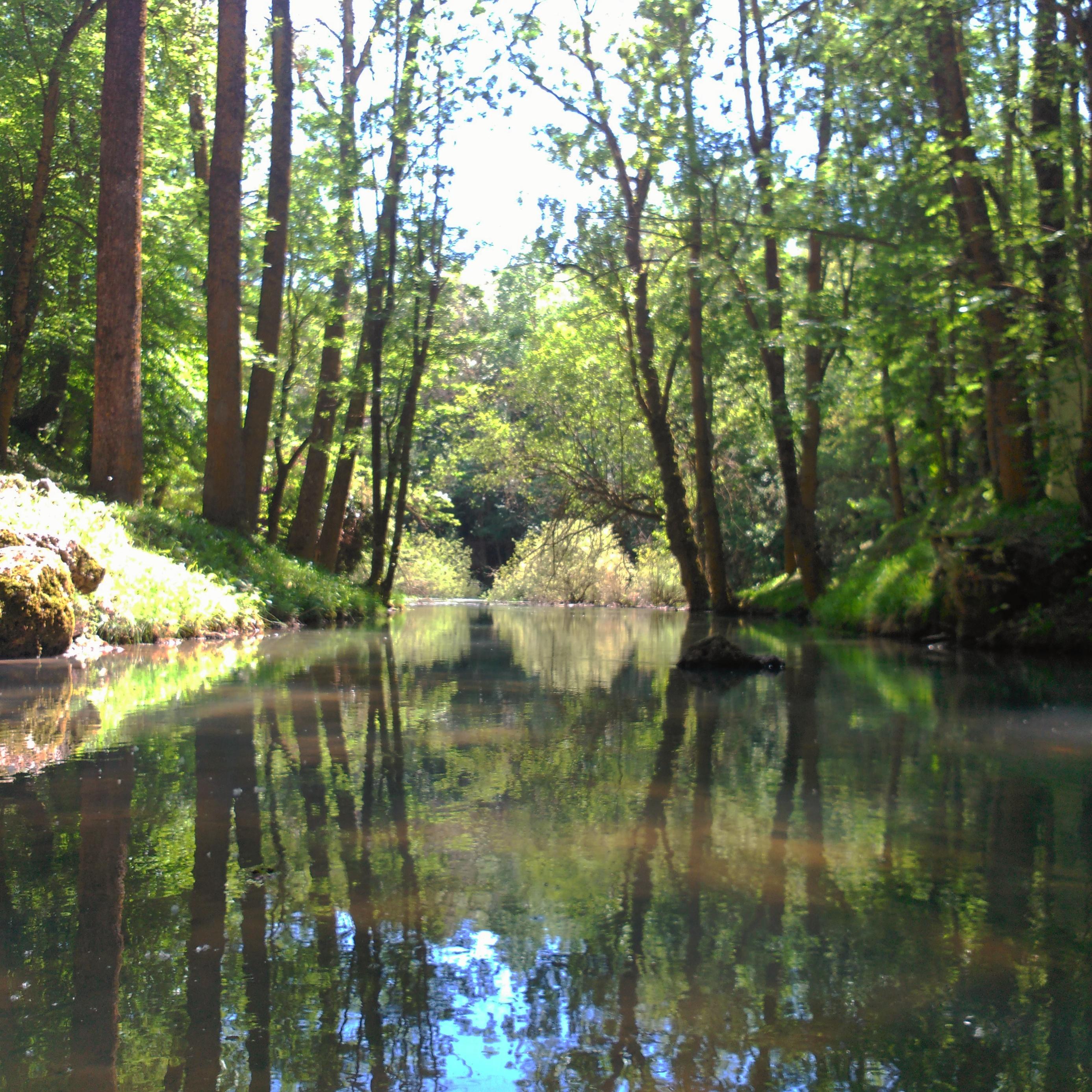 Las aguas del río Ebro, inmediatamente después de haber surgido del subsuelo, en su nacimiento tradicional.