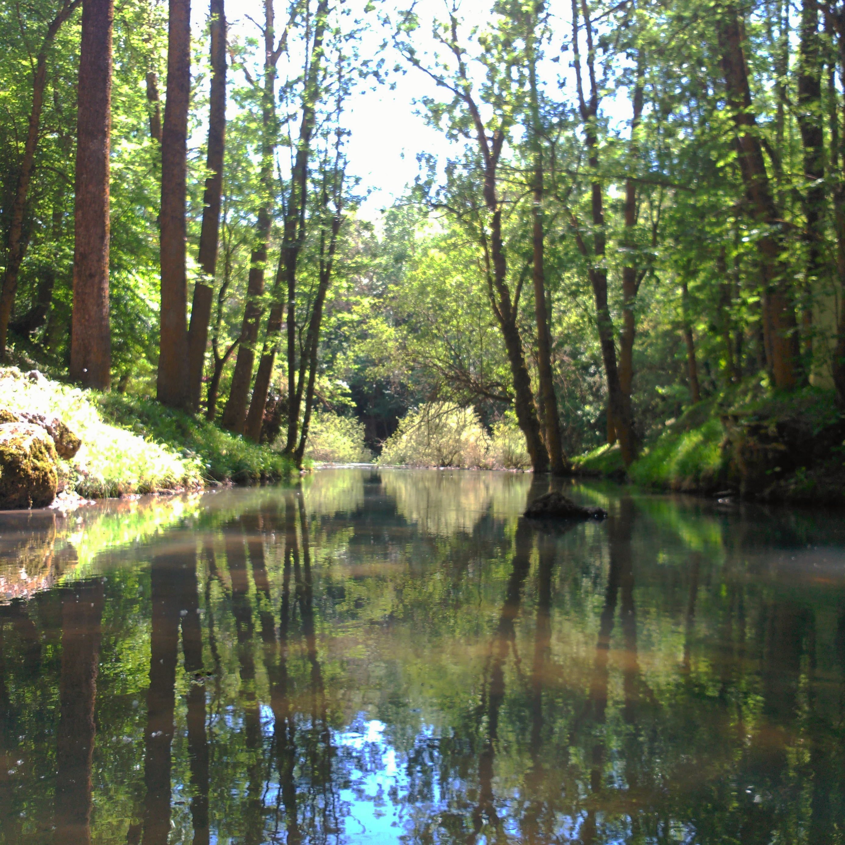 nacimiento rio ebro