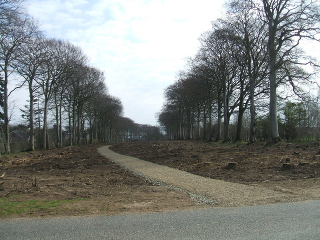 New path at Aden Country Park - geograph.org.uk - 398601