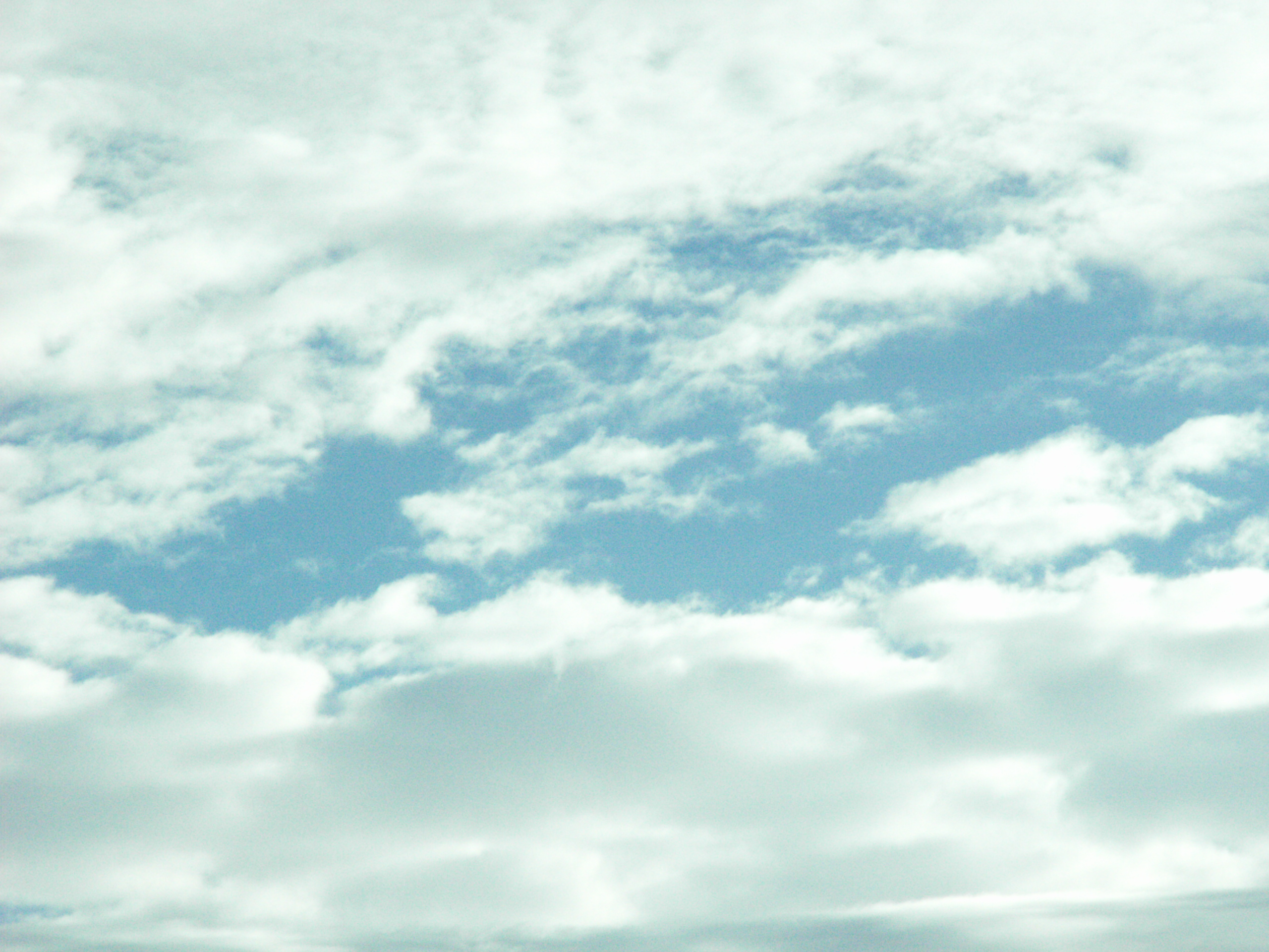 File nuages blanc ciel bleu clair jpg wikimedia commons - Stickers muraux nuages blancs ...