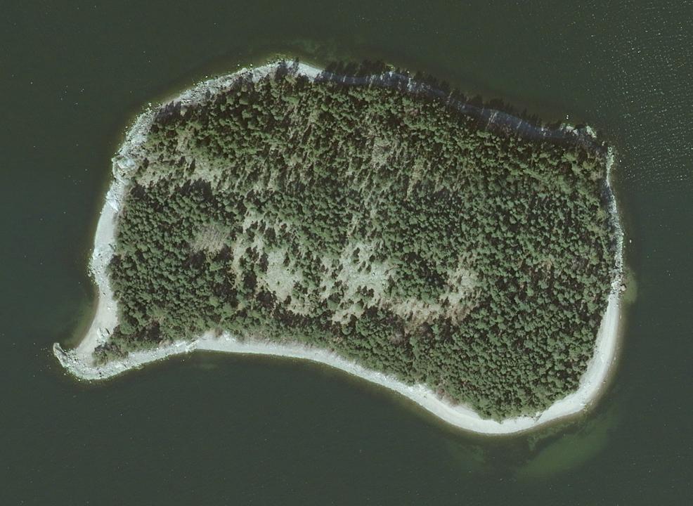 Omenainen Saari