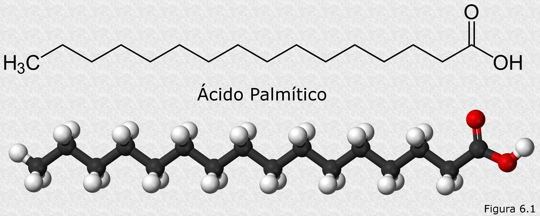 File:Palmitic-acid.jpg - Wikimedia Commons