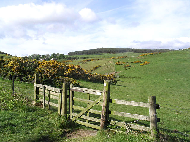 Public bridleway to Wooler Common - geograph.org.uk - 444975
