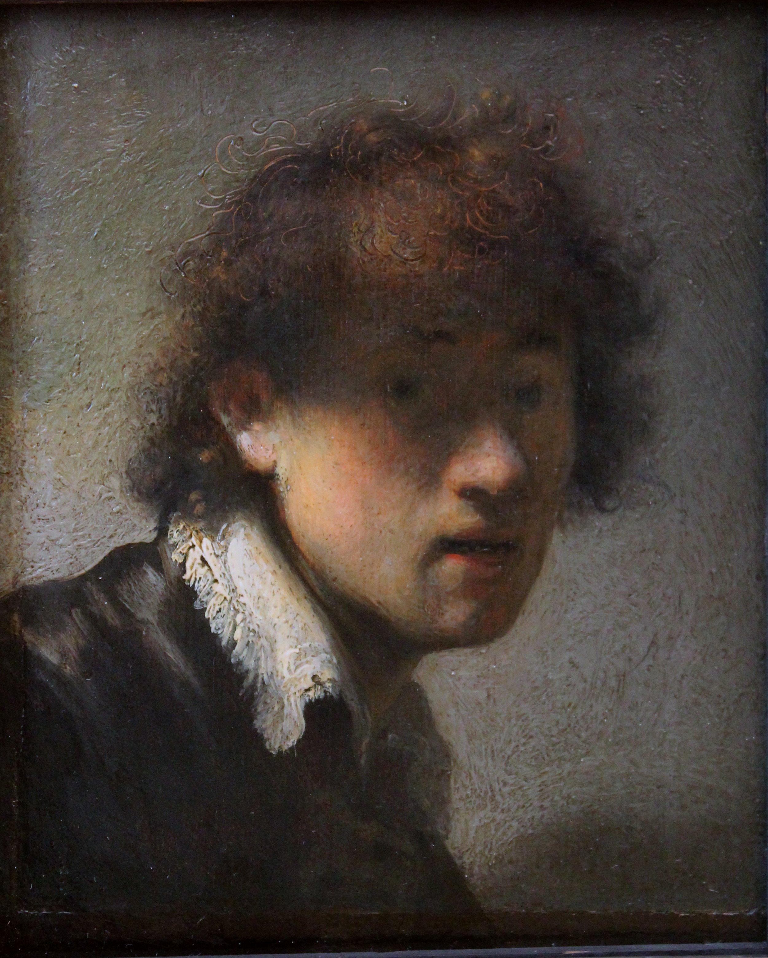 Rembrandt Van Rijn Self Portrait 1629 ConSentido Propio: Pri...