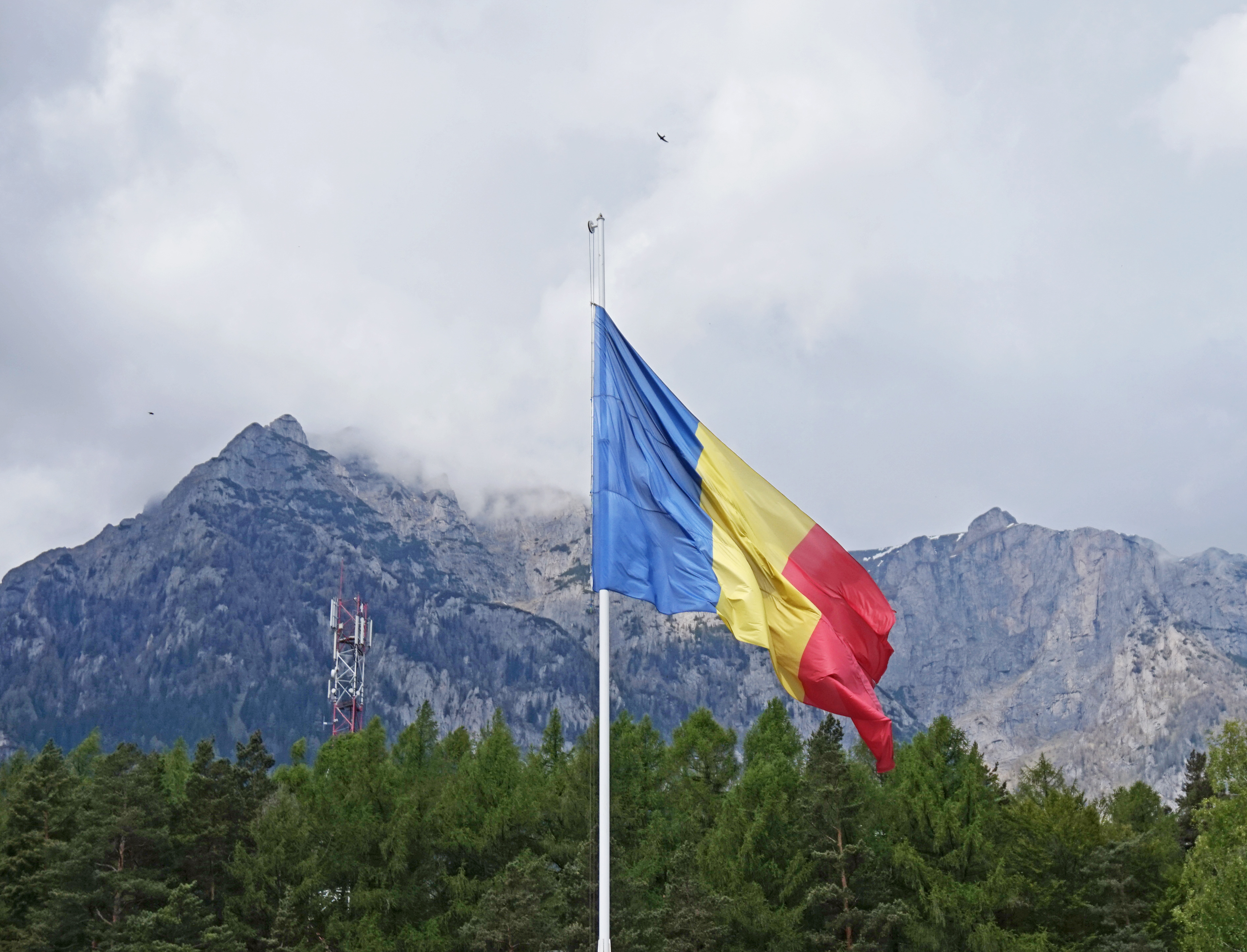 FileRomanian flag and mountainjpg  Wikimedia Commons