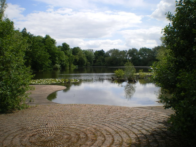 The Withy Pool One of a number of pools and ponds throughout Telford Town Park; most, like this, were originally part of the water balancing and supply system for the network of canals in the area, serving the industries during the Industrial Revolution.
