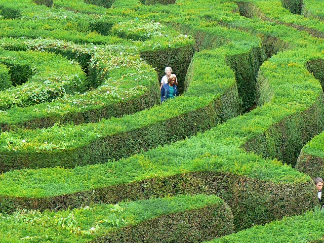 File:The maze, Longleat safari park - geograph.org.uk - 938546.jpg