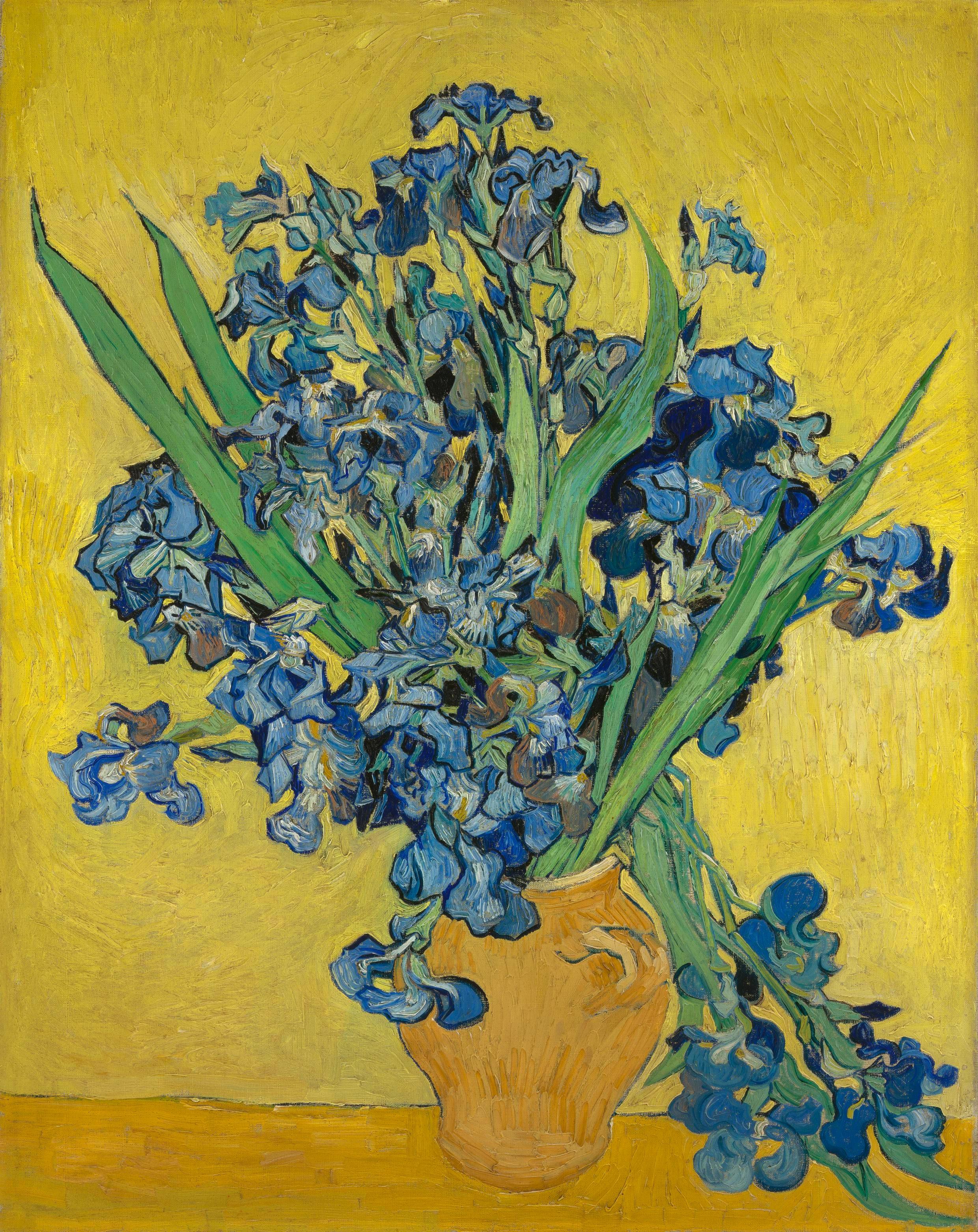 Vincent van Gogh: Irises (1890)
