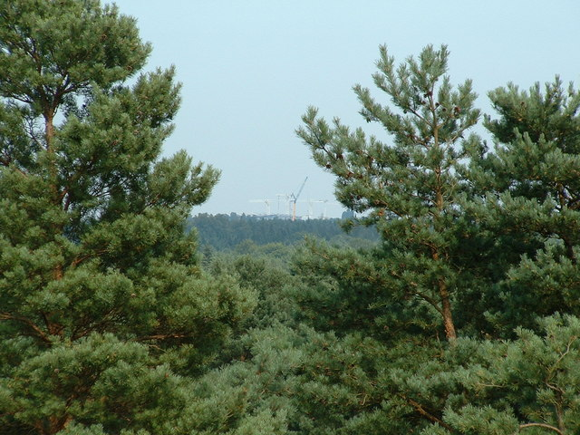 View across Bracknell Forest to the new stand at Ascot Racecourse - geograph.org.uk - 131700