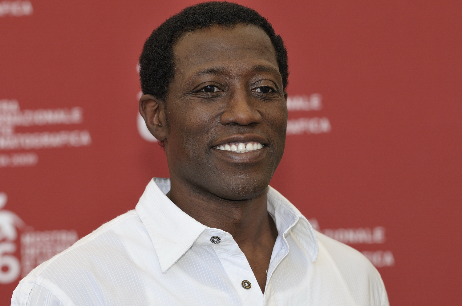 Wesley Snipes earned a  million dollar salary - leaving the net worth at 10 million in 2018