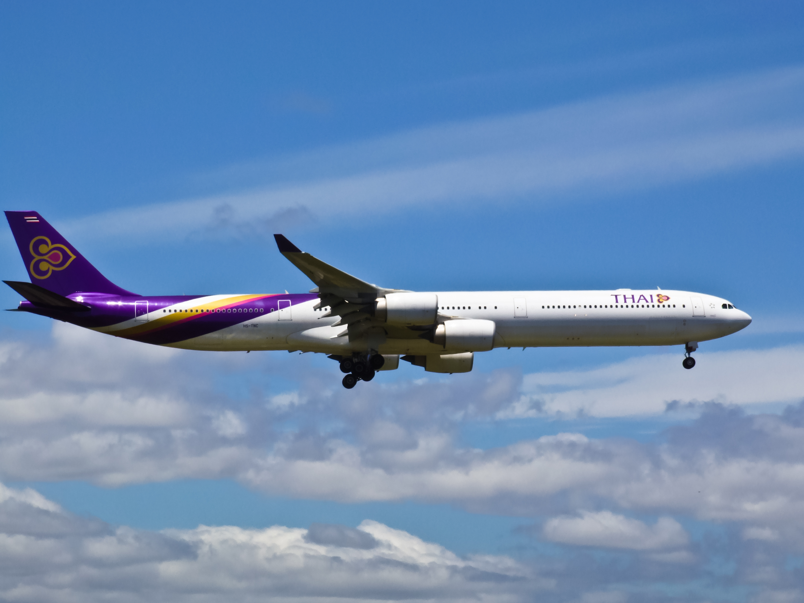 Download this Description Thai Airways Tnc picture