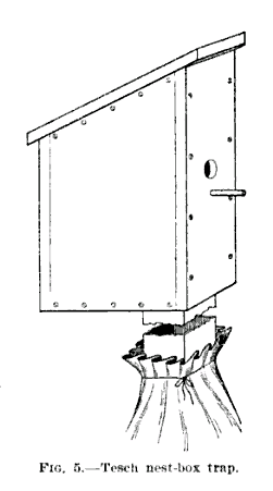 19th century knowledge traps and snares tesch nest box trap 1.PNG