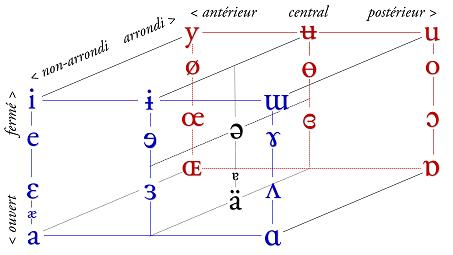 Alphabet Phonétique International Wikipédia