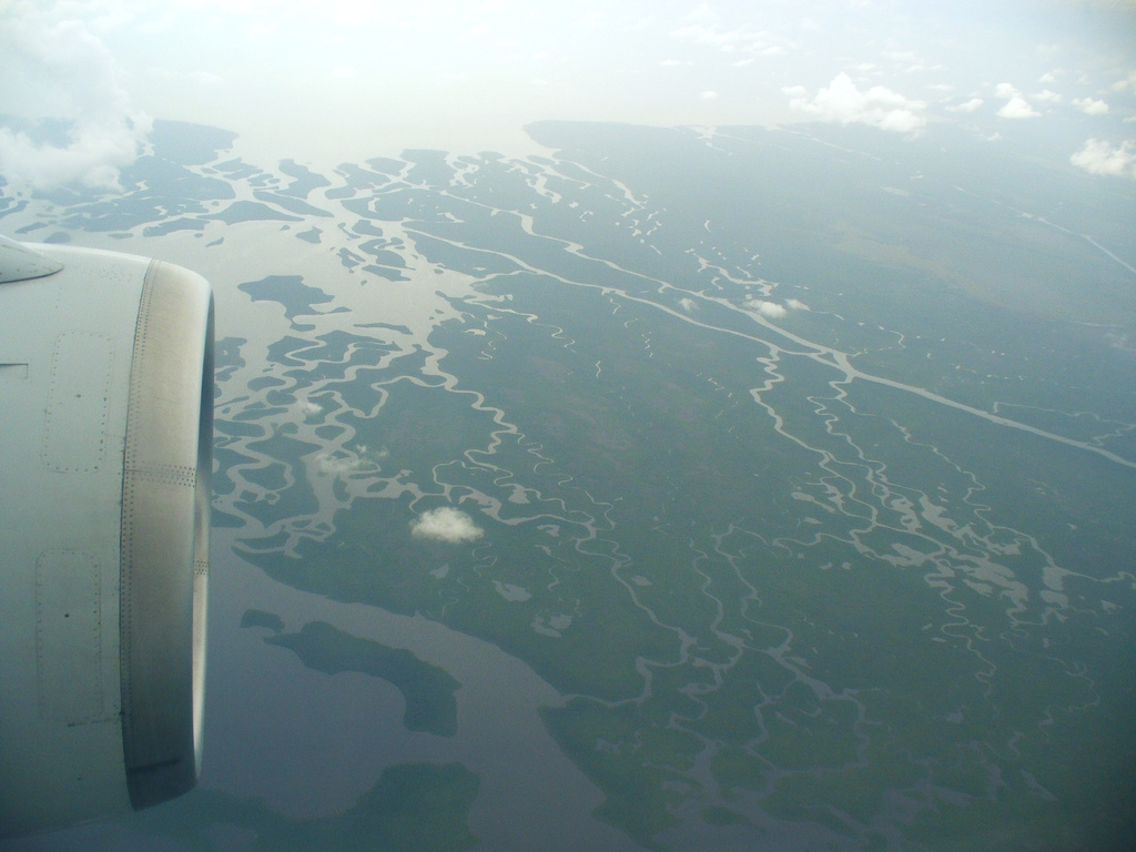 Shark River (Florida) - Wikipedia - 453.4KB