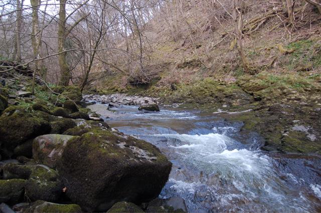 Afon Nedd Fechan - geograph.org.uk - 383872