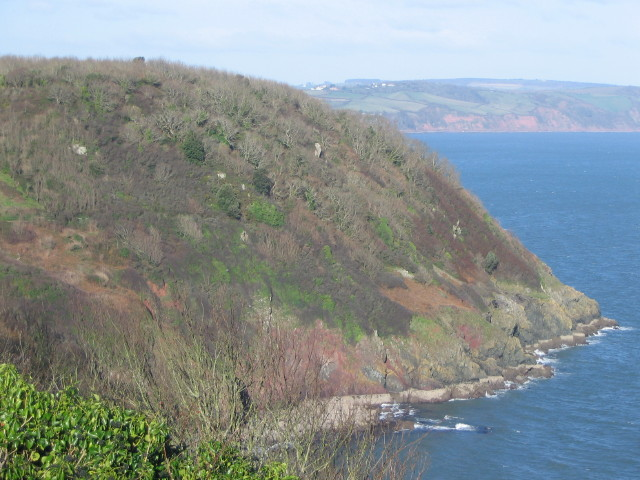 Black Head, Torquay - geograph.org.uk - 370751