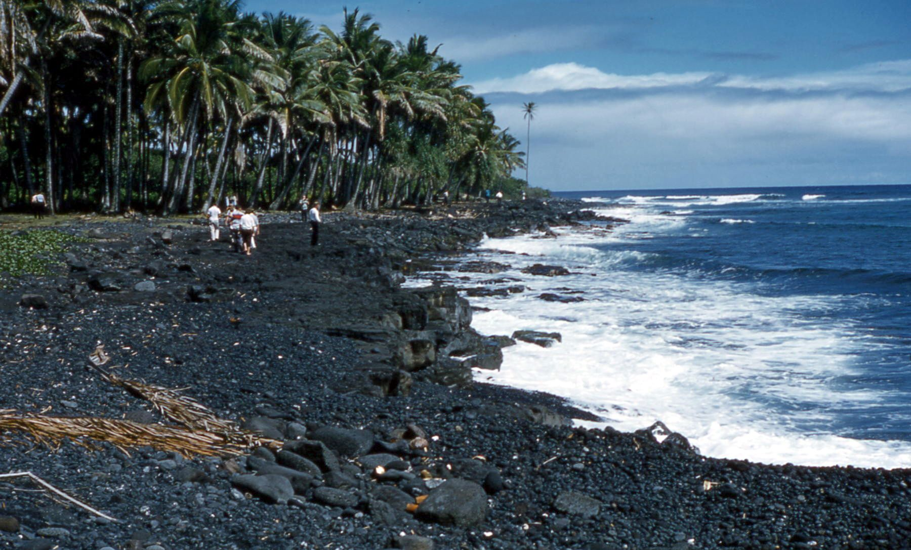 File Black Sand Beach Island Hawaii 1959 Jpg Wikipedia