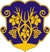 Coat of arms of Uzhgorod.png