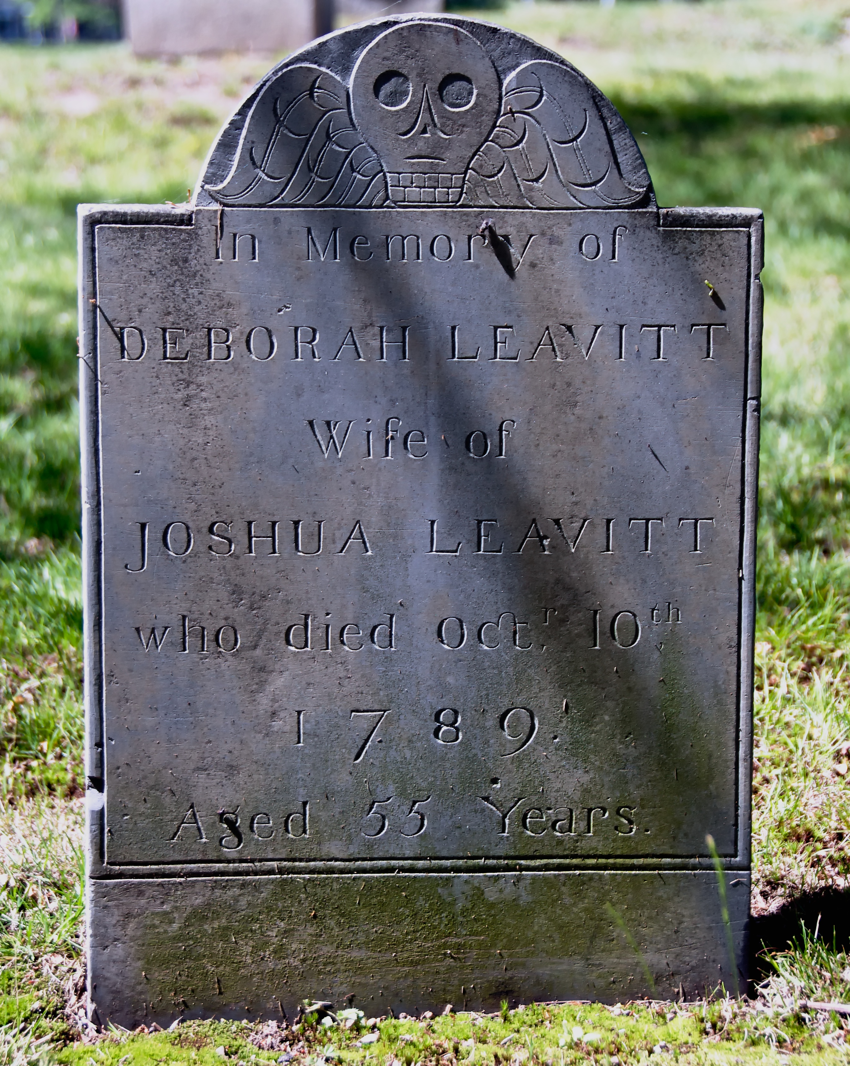 https://upload.wikimedia.org/wikipedia/commons/5/5d/DeborahLeavitt.jpg