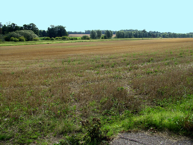 Field south of Saxmundham - geograph.org.uk - 975503