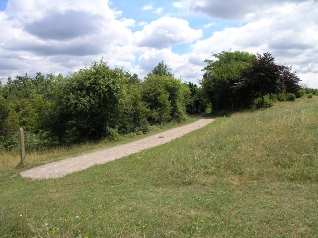 Footpath - geograph.org.uk - 26039