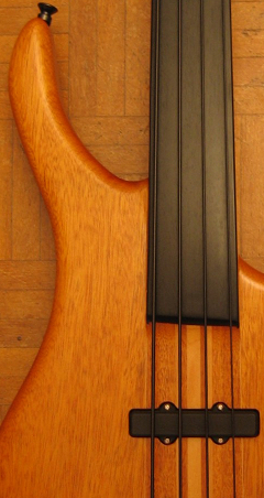 Condition Fretless Bass Guitar Fingerboard