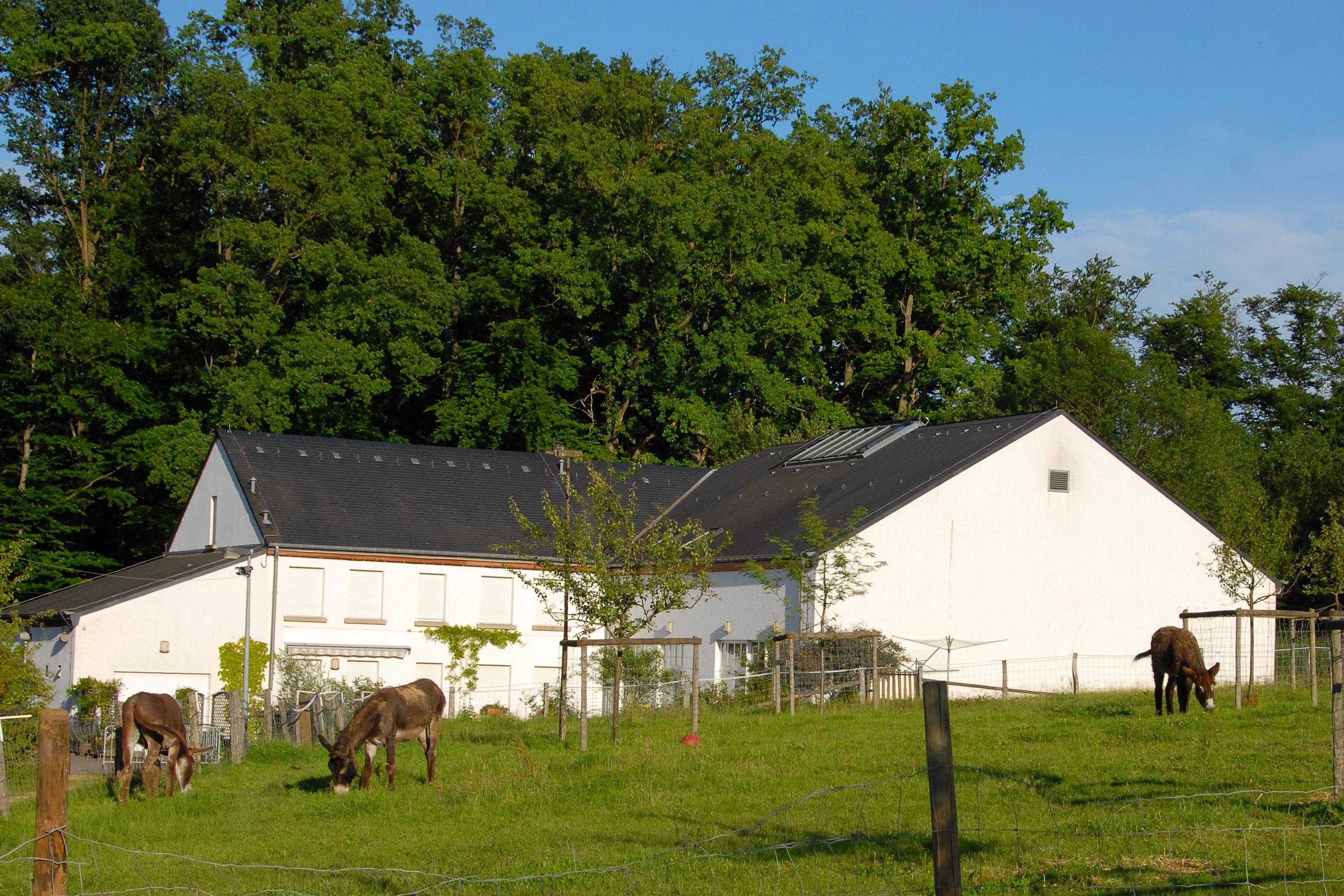 da4156f8f9dab4 File Haus vun der Natur h2007-06-24.JPG - Wikimedia Commons