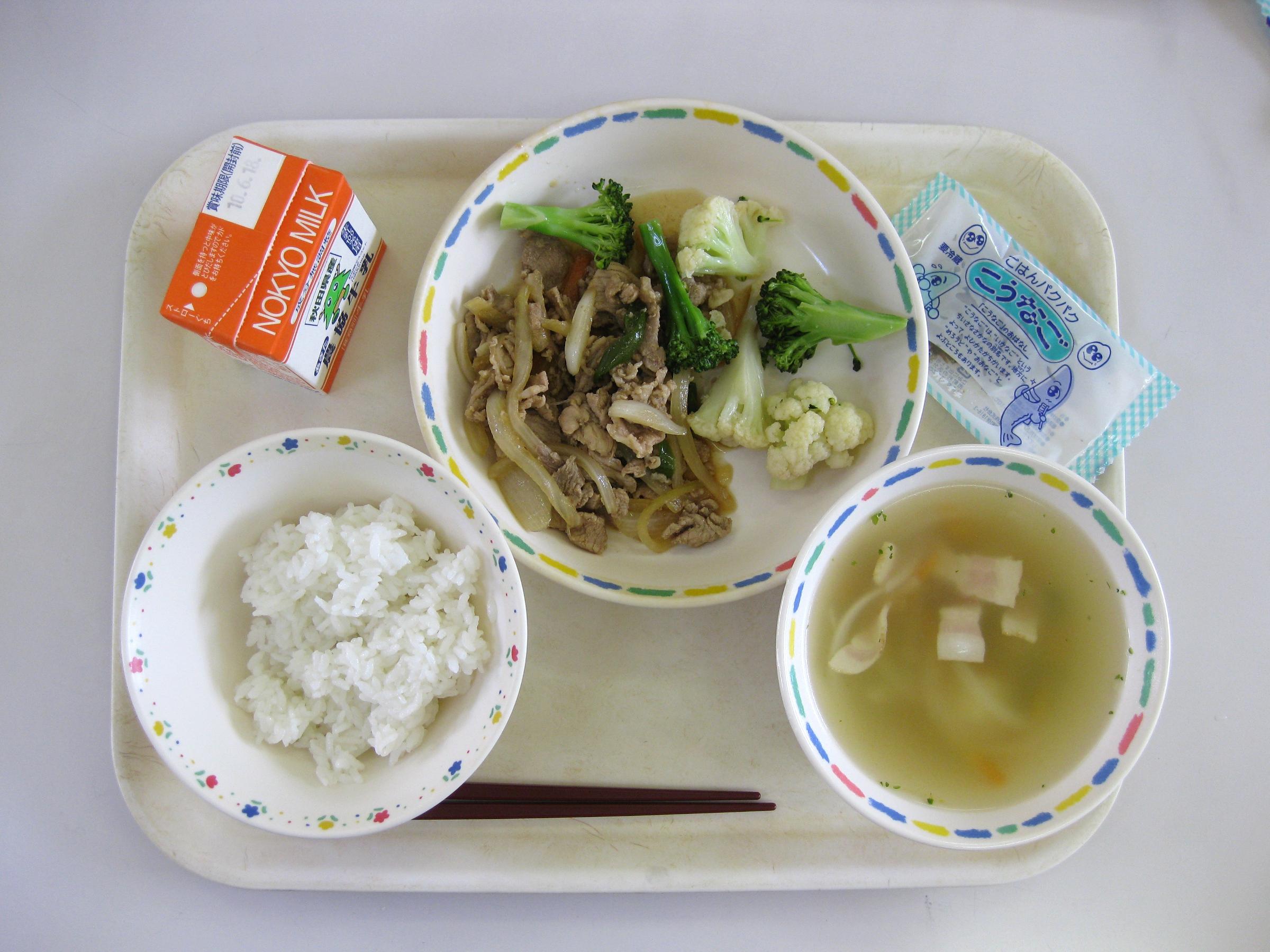 Japanese Food Lunch Menu