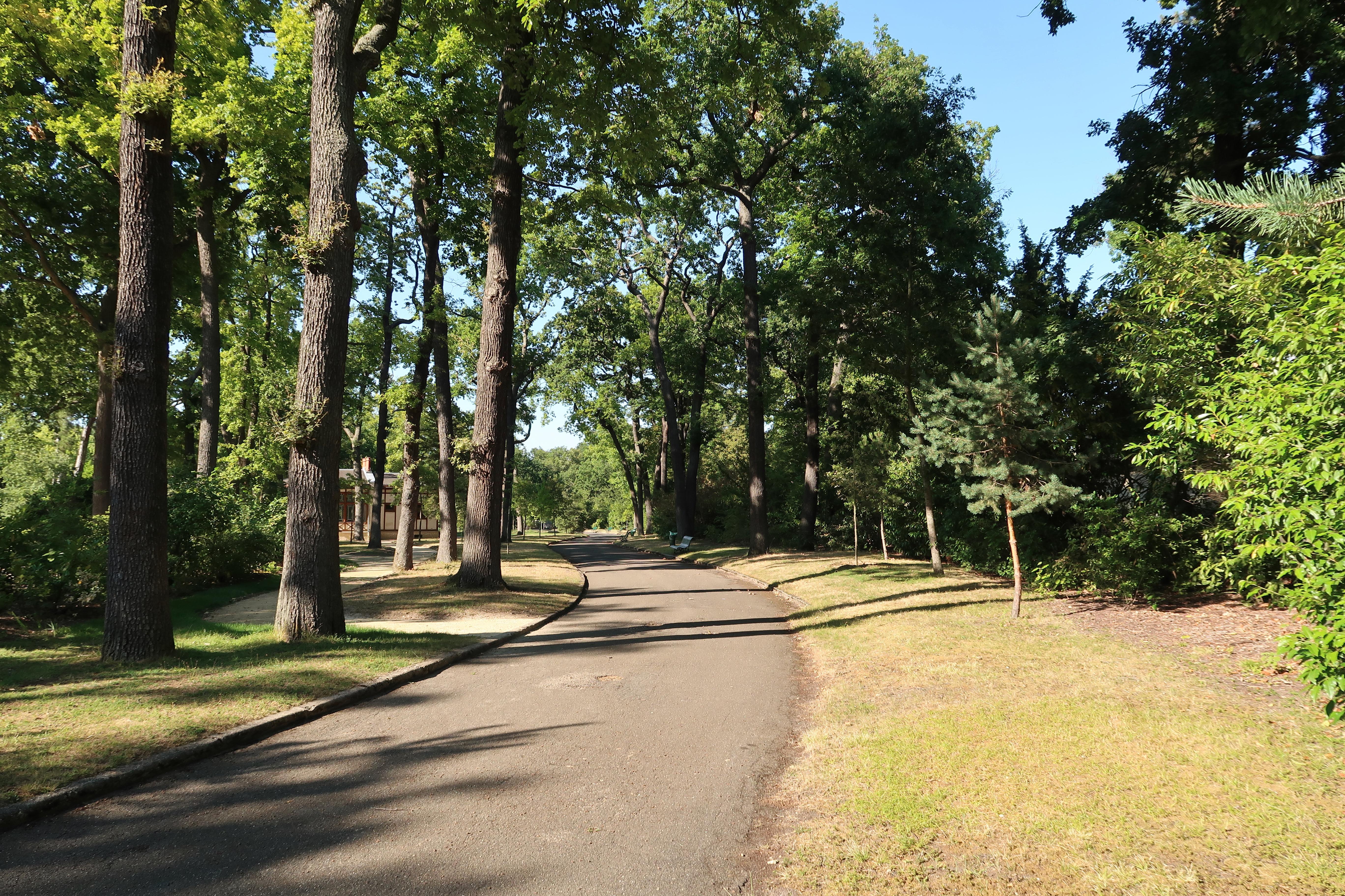Comment Faire Un Bucher En Bois jardin du pré-catelan — wikipédia