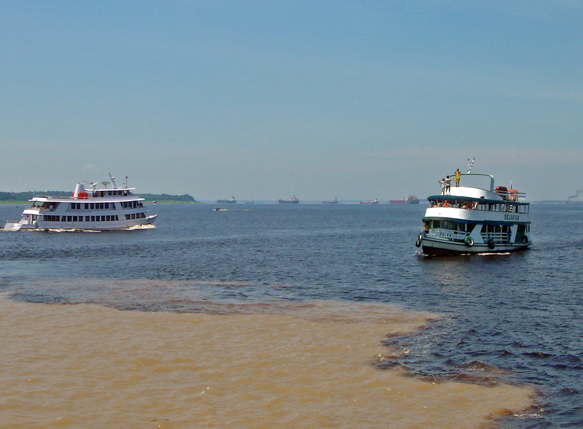 The confluence of the Rio Negro (black) and the Rio Solim es (sandy) near Manaus, Brazil.