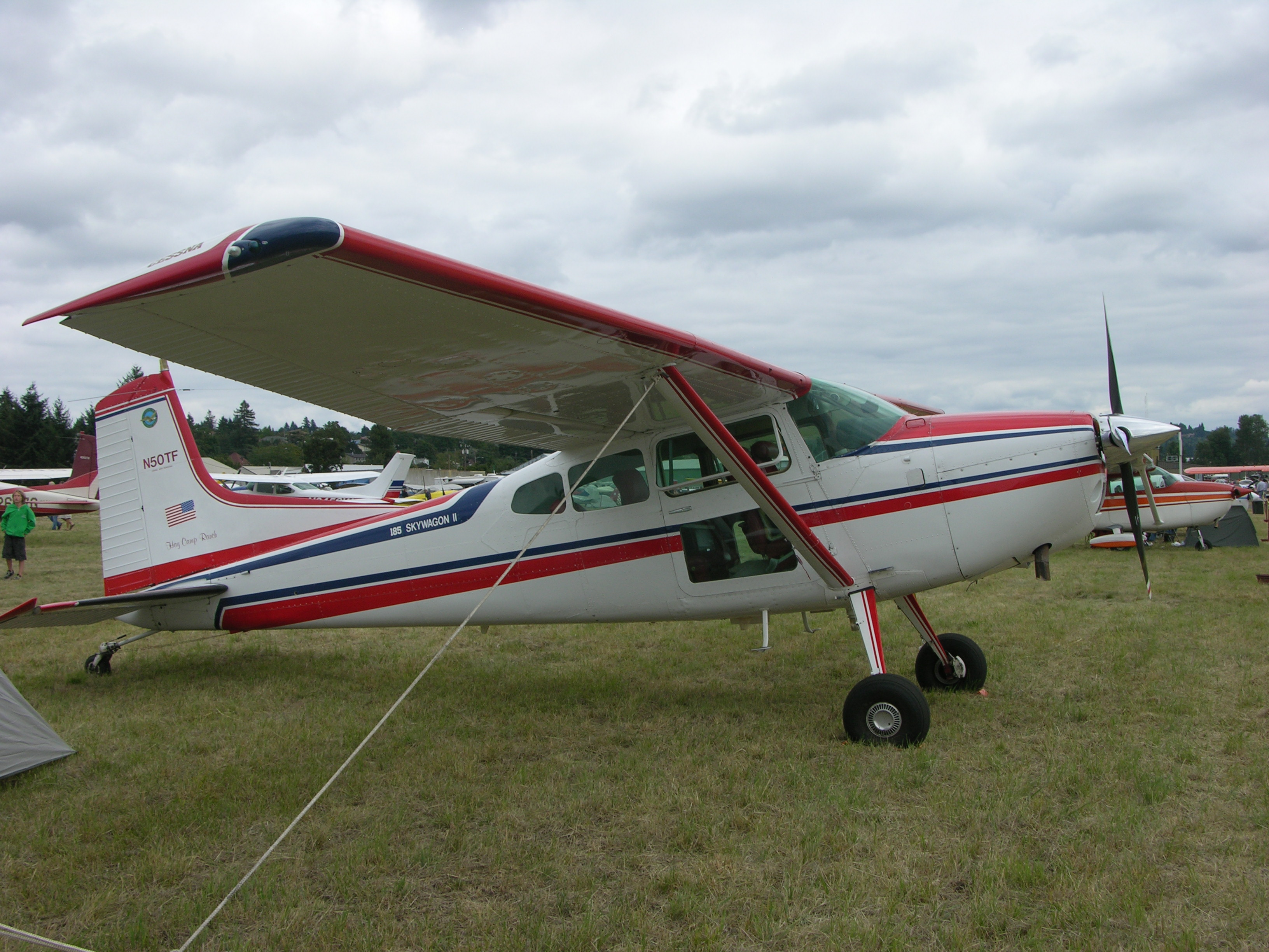 hatchet plane crash