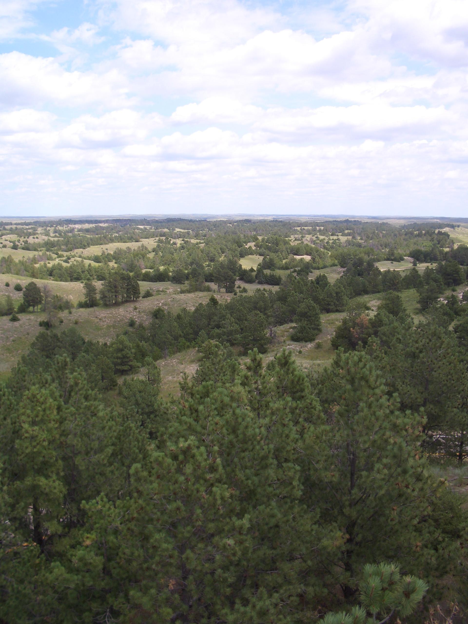 file nebraska national forest  bessey ranger district  no