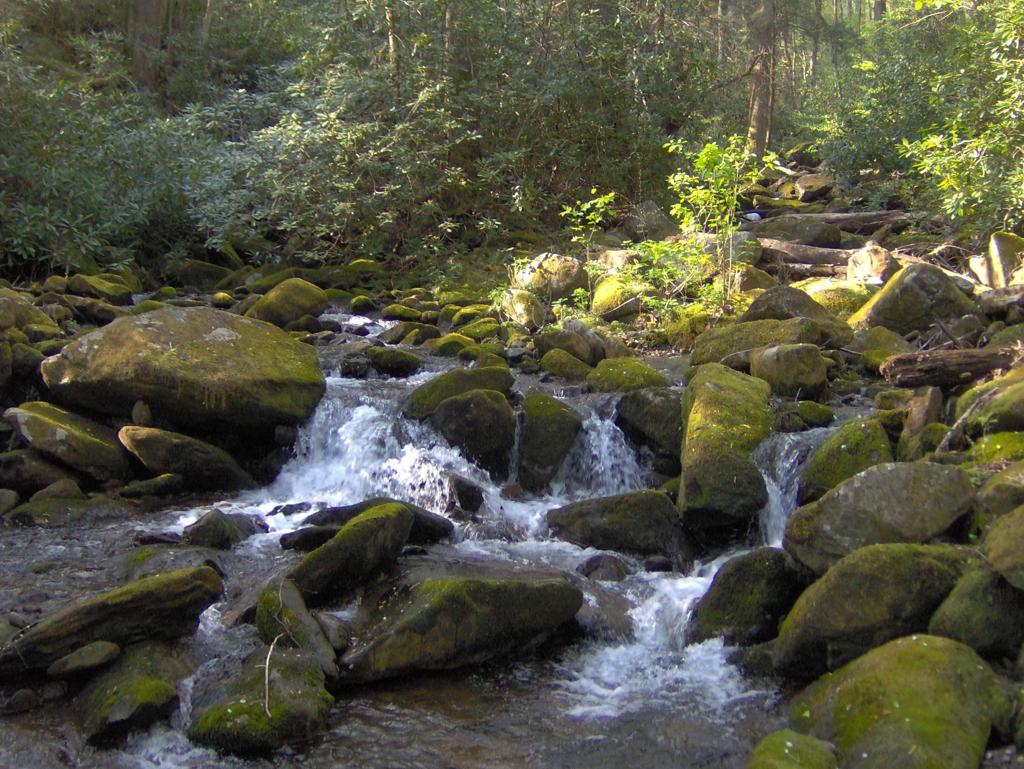 file rock creek gsmnp1 jpg wikimedia commons