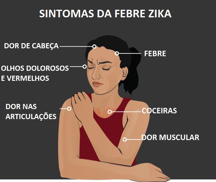 Is The Zika Virus In Panama City Beach Florida