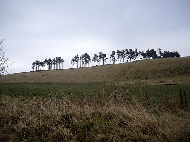 Skyline of Market Hill - geograph.org.uk - 1217167.jpg