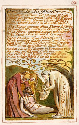 William blake songs of innocence and experience essays