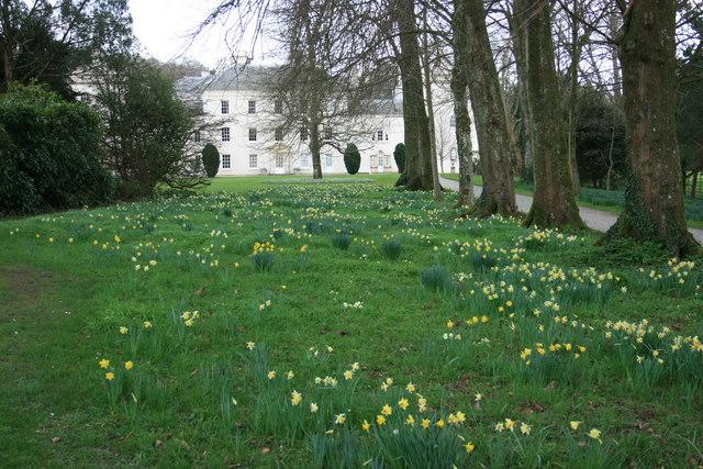 The garden at Saltram - geograph.org.uk - 1194649