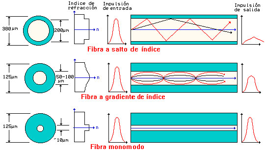 File:Tipos fibra.jpg - Wikimedia Commons