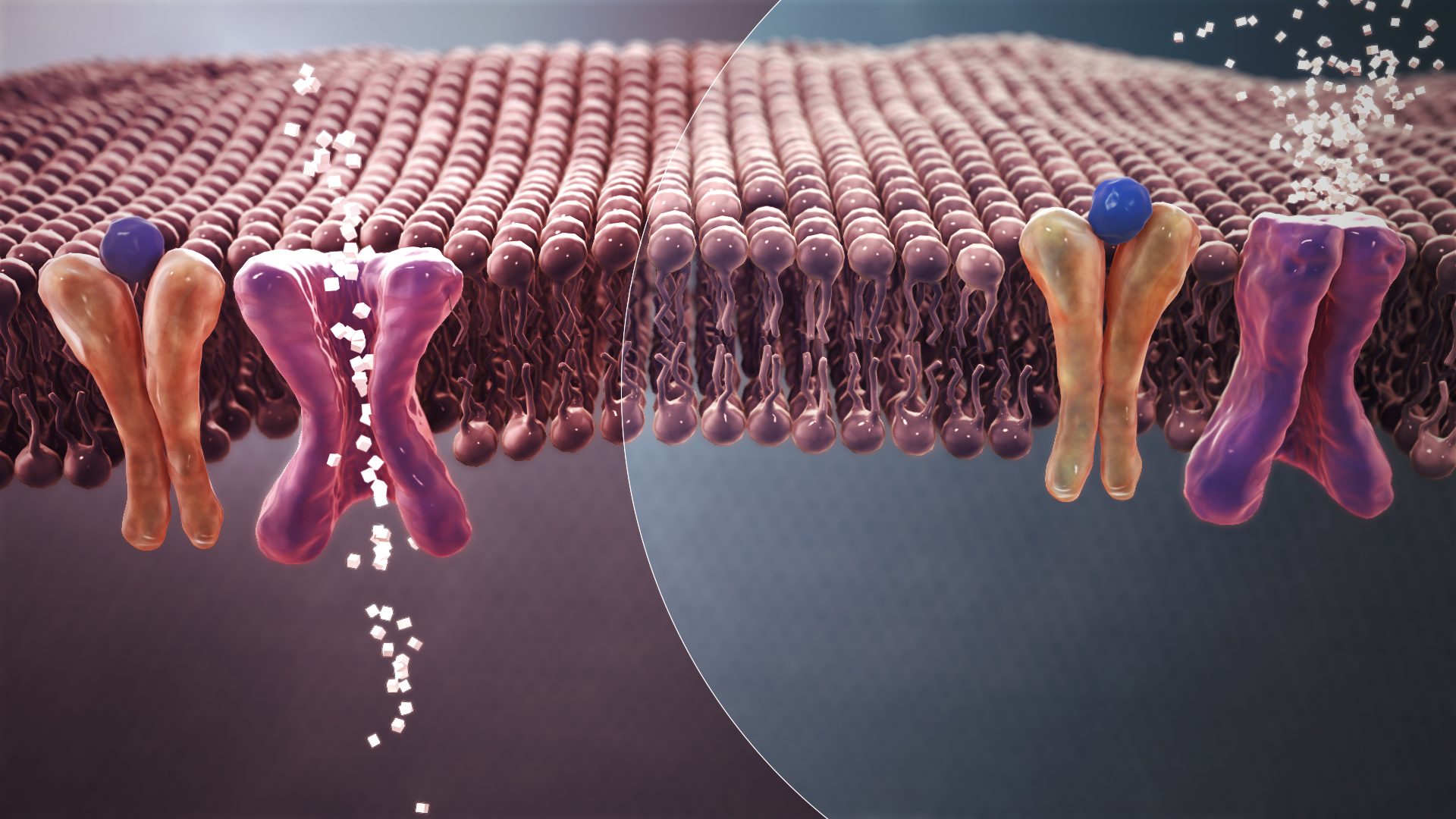 Badanie: Masa urodzeniowa jest ściśle związana z rozwojem cukrzycy typu 2 w późniejszym życiu