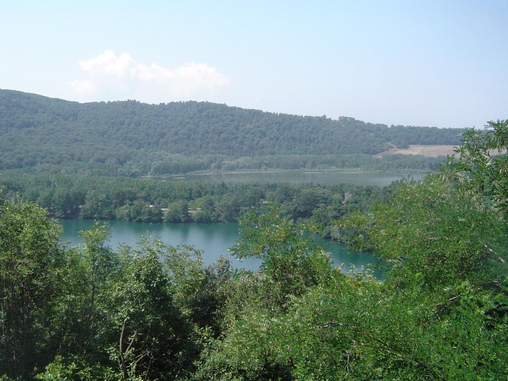 Risultati immagini per area protetta vulture wikipedia