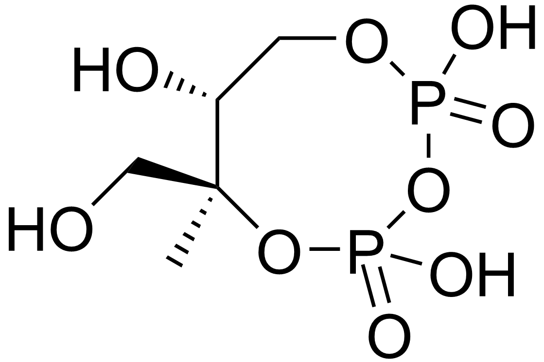 2-c-methyl-d-erythritol-2 4-cyclopyrophosphate