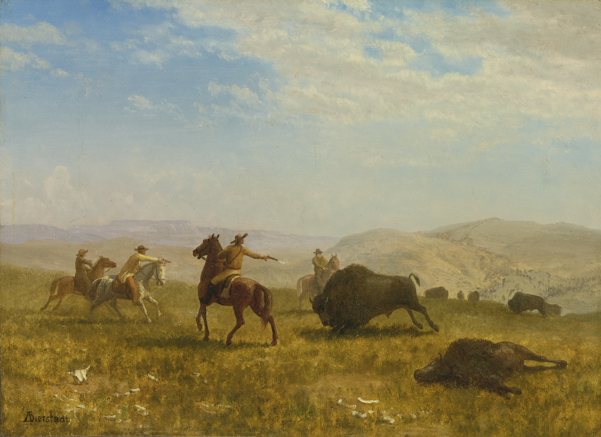 Cowboys shooting buffalo in the wild west