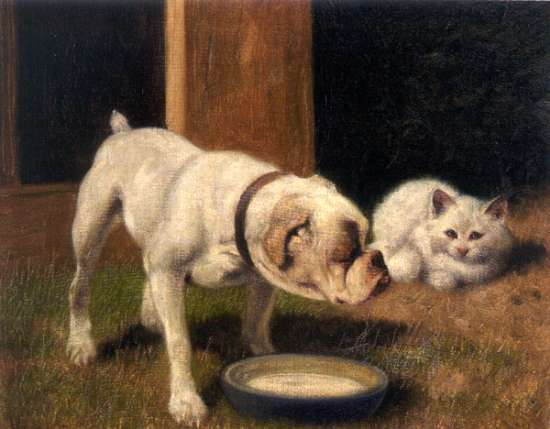 File:Arthur Heyer - A Bulldog with White Persian Cat.jpg