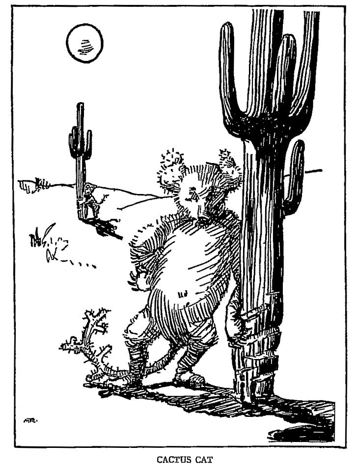 Illustration of an American Southwest mythical cactus cat.