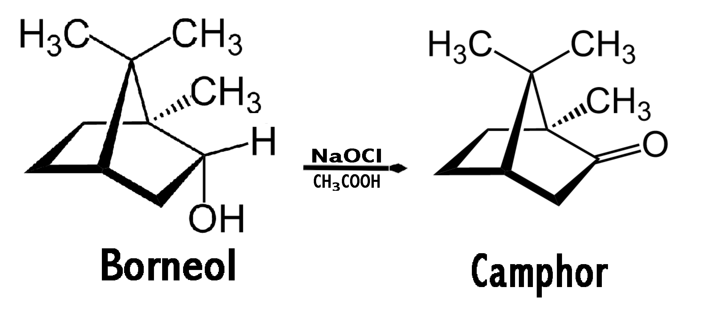 the green oxidation of borneol to camphor A green experiment for the undergraduate organic chemistry laboratory oxidation of borneol to camphor sisyphus of essay the myth sicherheitstechnische kenngrößen.